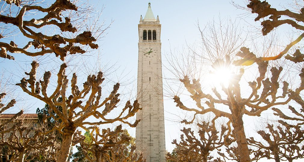 Campanile with tree-lined path in the foreground